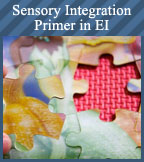 Sensory Integration Online Course And Certification In